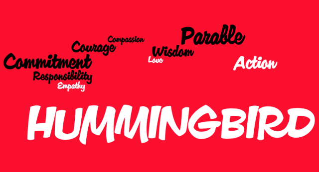Flight of the Hummingbird Word Cloud