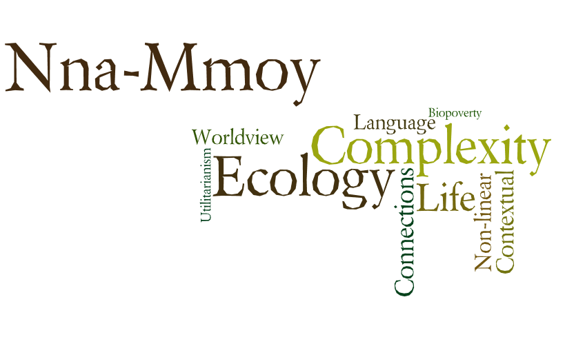Changing Planes Nna Mmoy Language Word Cloud