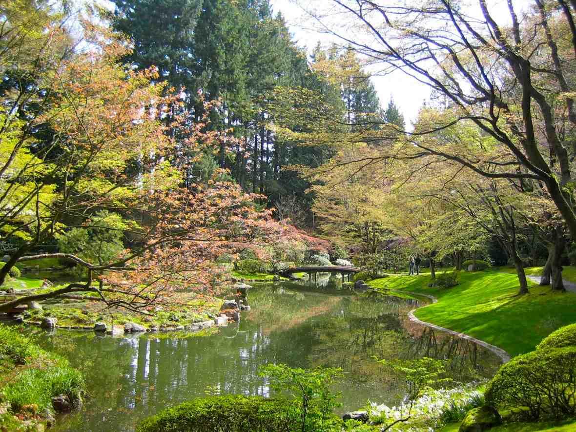 Japanese zen gardens with pond - Nitobe Japanese Zen Garden Pond