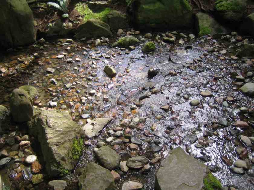 Nitobe Japanese Zen Garden - Rocks and Water