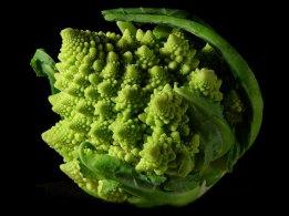 Nna Mmoy Fractal Broccoli