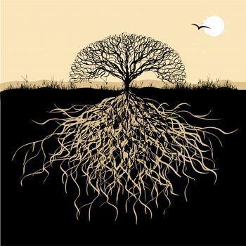 Pollan's S... Oak Tree Symbolism Marriage