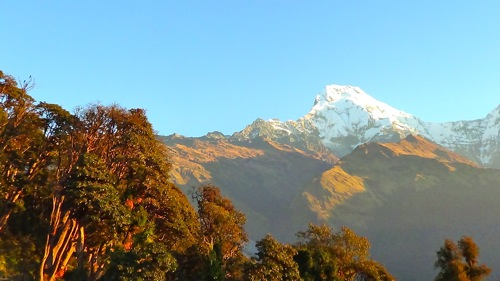 Annapurna Sunrise at Tadapani