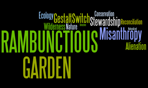 Rambunctious Garden Wordle 2