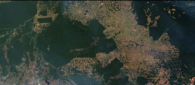 Deforestation from Space - Overview Effect