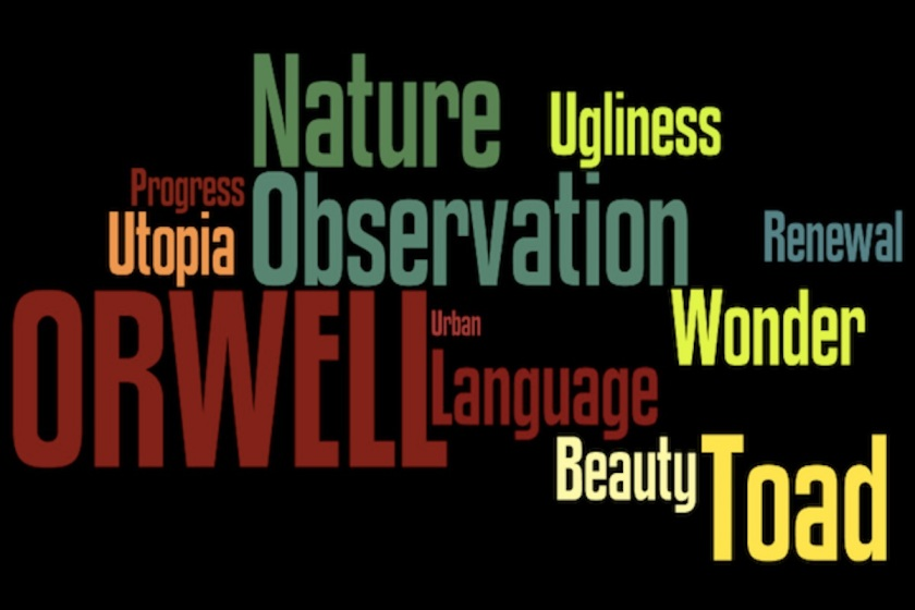 orwell-thoughts-on-the-common-toad-wordle