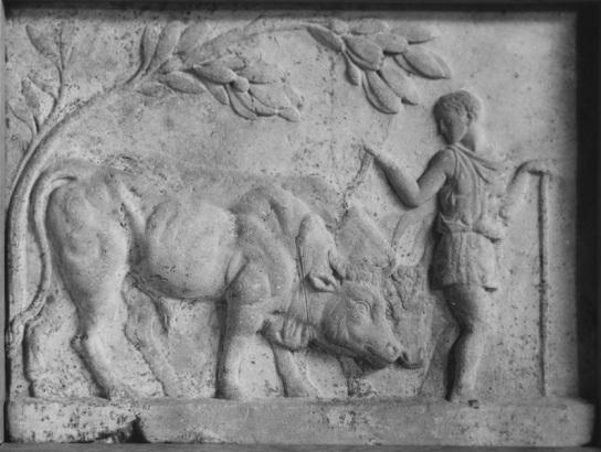Roman Relief Walter Art Museum