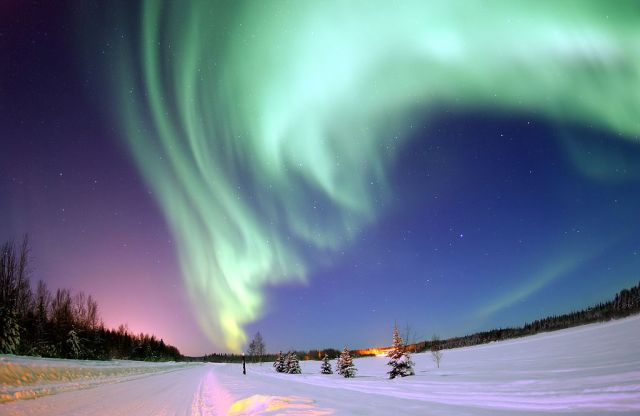 Arctic Dreams and Northern Lights