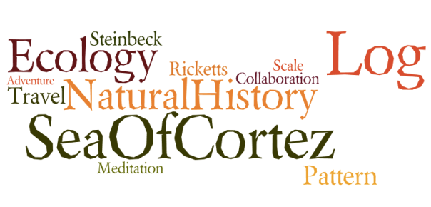 Steinbeck Log Sea of Cortez Wordle
