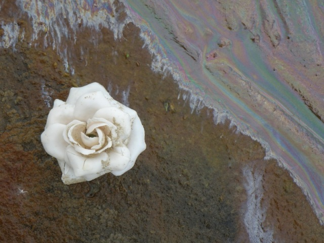 Jun 2013 Unnatural Plastic flowers