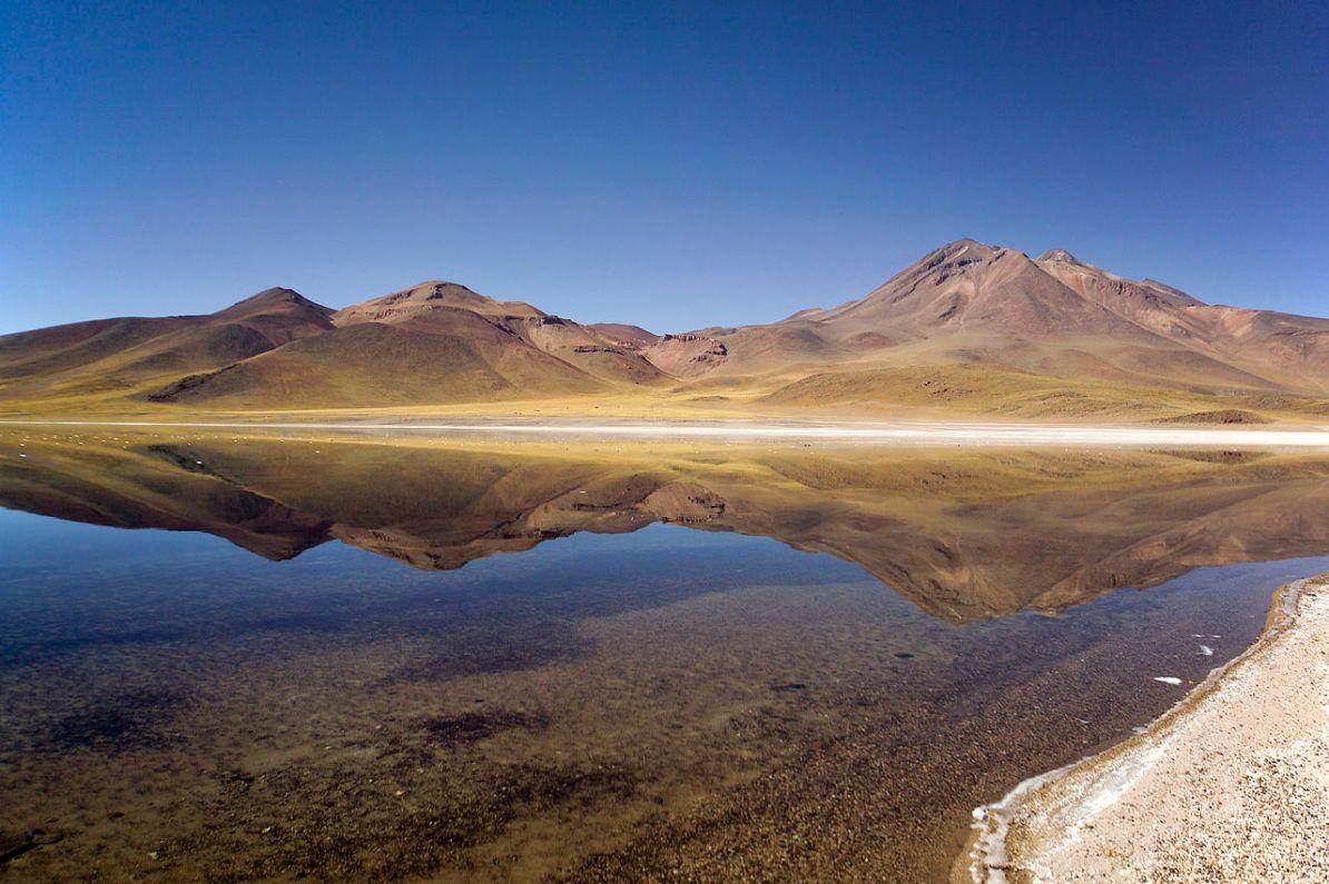 Dispossessed Laguna Miscanti - Antofagasta Chile