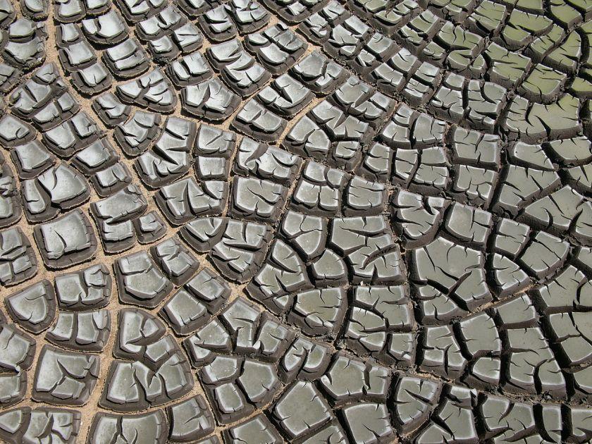 Dessication Cracks - Drought