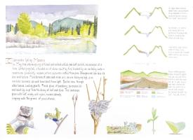 Clearwater Valley Mosaic - Lyn Baldwin