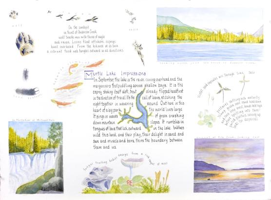 Murtle Lake Impressions - Lyn Baldwin