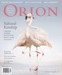Orion 2017 Apr Cover